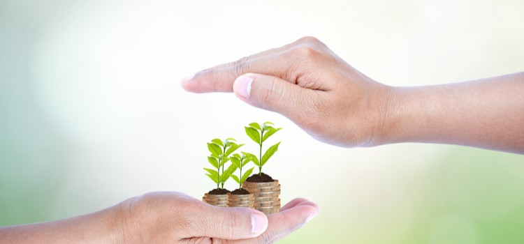 Sustainable investment continues to grow: Do ethics affect your investment choices?